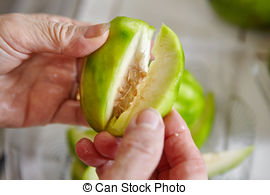 Stock Photo of Ambarella or kedondong in Indonesia, a local fruit.