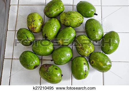 Stock Image of Ambarella k27210495.
