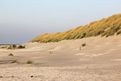 Dunes, Beach And Coast At Ameland, The Netherlands Stock Images.