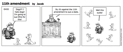 11th amendment cartoon.