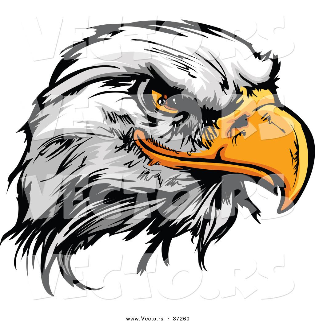 539 Eagle Head free clipart.