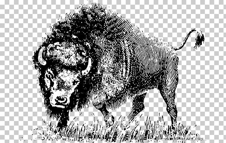 American bison graphics Open , buffalo head black and white.
