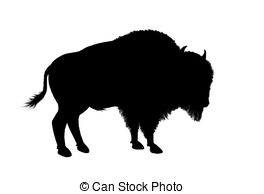 American buffalos Illustrations and Clip Art. 628 American.