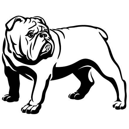 Bulldog clipart american bulldog, Bulldog american bulldog.