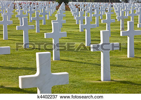 Picture of Rows of white crosses at the World War 2 American.