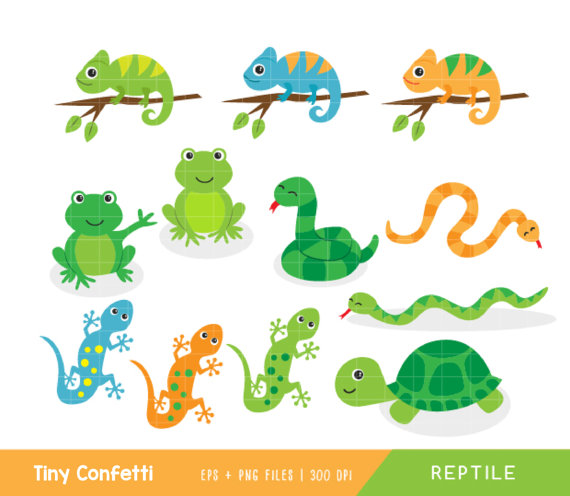 reptile clipart, reptile clip art, snake clipart, frog clipart.