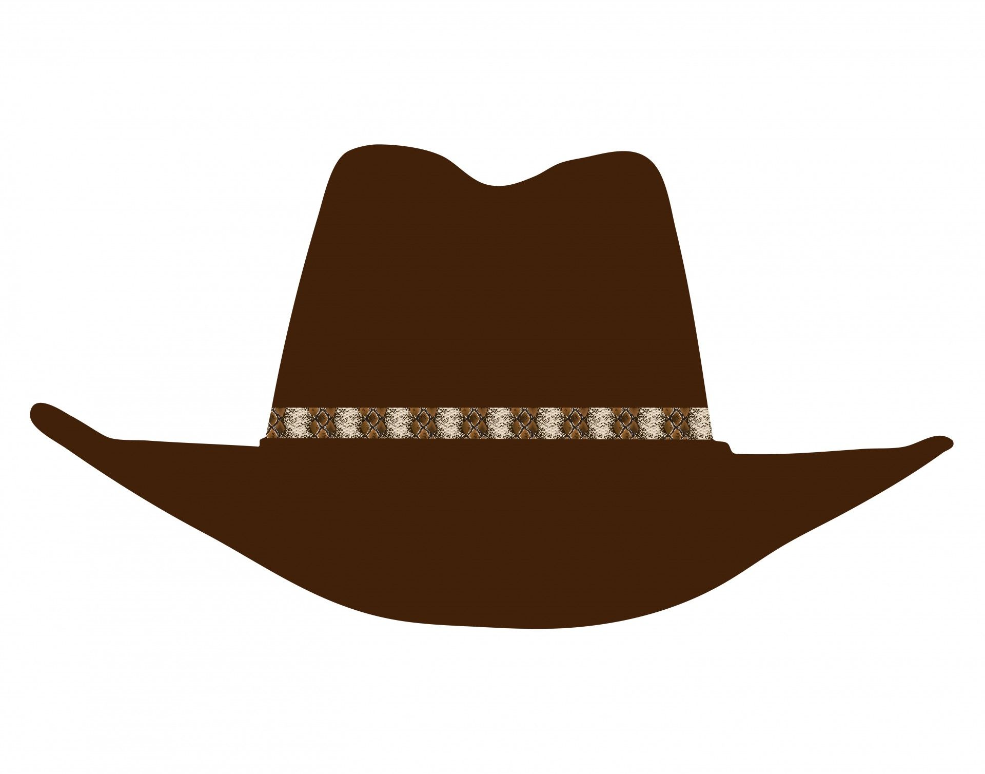 Cowboy Hat Clip.