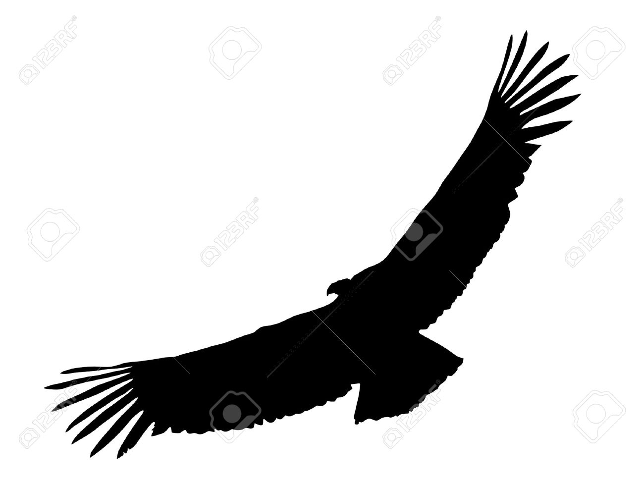 Illustration In Style Of Black Silhouette Of Condor Royalty Free.