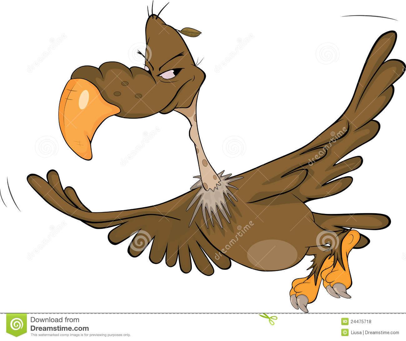 Condor Stock Illustrations.