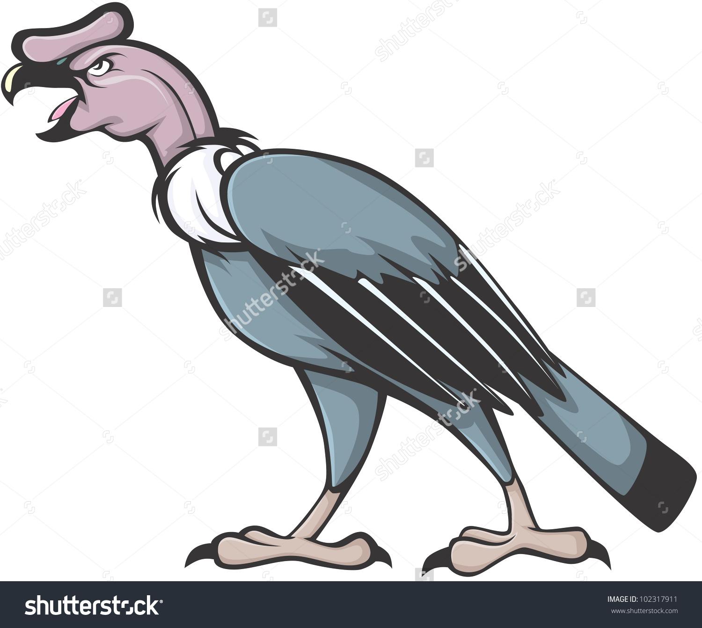 Wild Andean Condor Illustration Stock Vector 102317911.