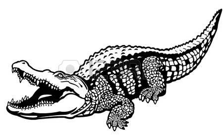 10,591 Crocodile Stock Illustrations, Cliparts And Royalty Free.