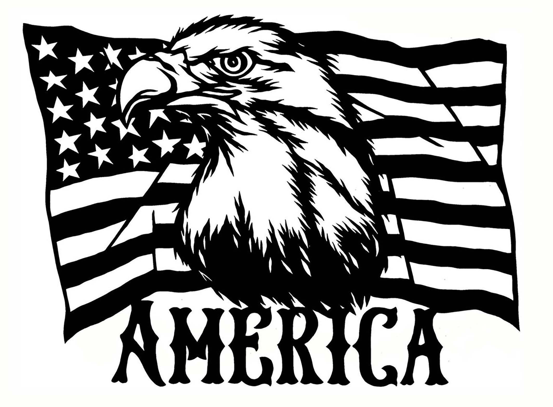 American Flag Eagle 2 pcs 3\