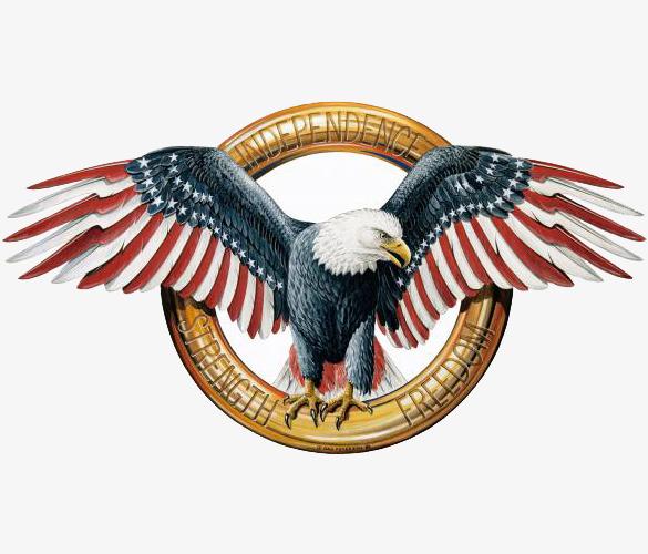 American Eagle, Eagle Clipart, States, Eagle PNG Transparent Image.