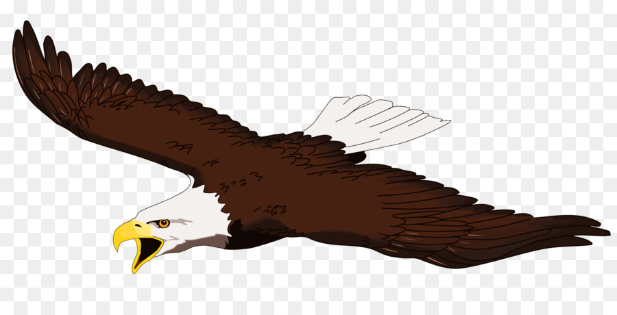 American Eagle Clipart at GetDrawings.com.
