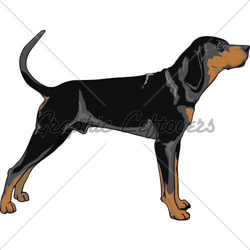 American coonhound clipart.