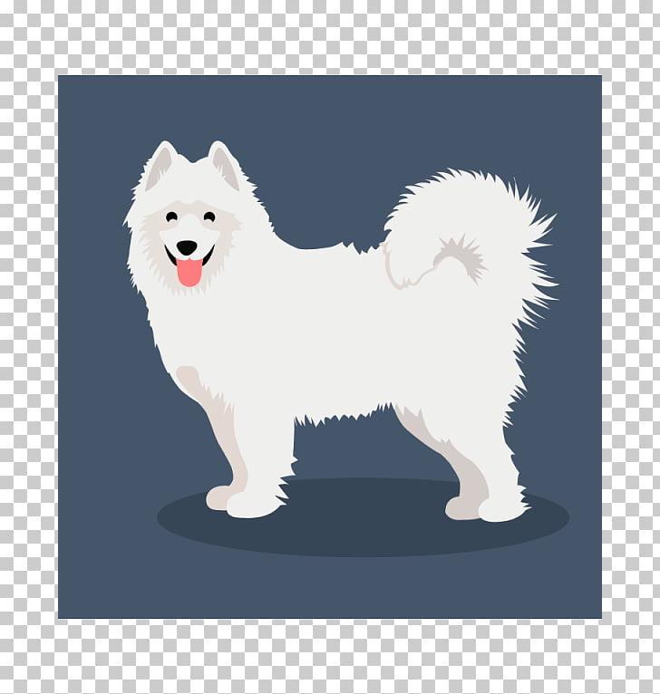 German Spitz Klein German Spitz Mittel American Eskimo Dog.