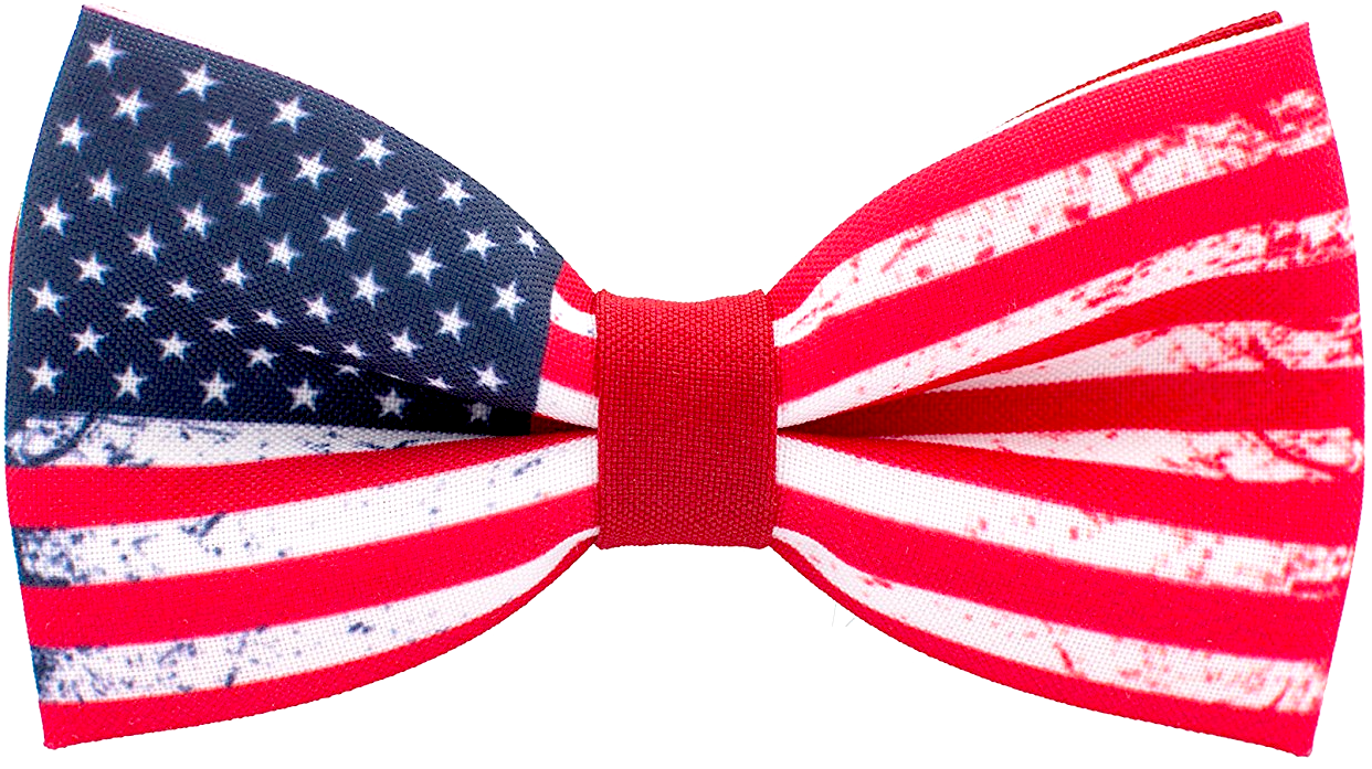 Ties Limited Edition American Flag Tie Simply.