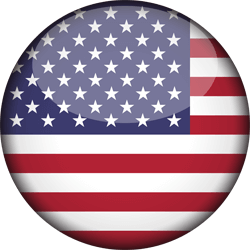 The United States flag vector.