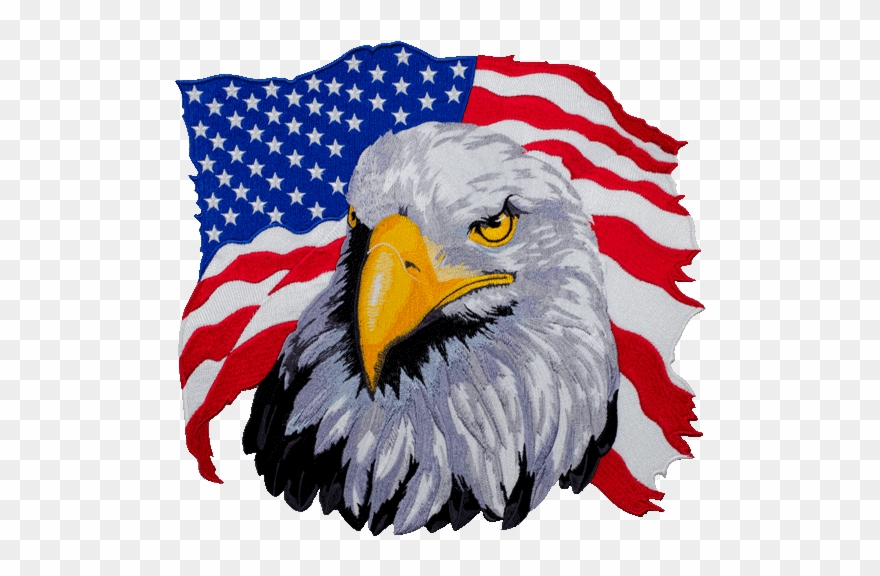 American Flag Eagle Png Clipart (#1355164).