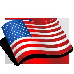 Us Flag Icon #113603.