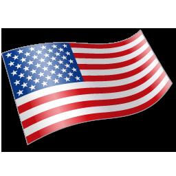 United States Flag Icon #166536.