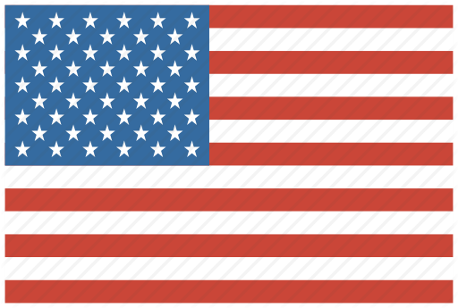 'US flags' by Vignesh P.