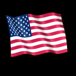 USA Flag Icon.