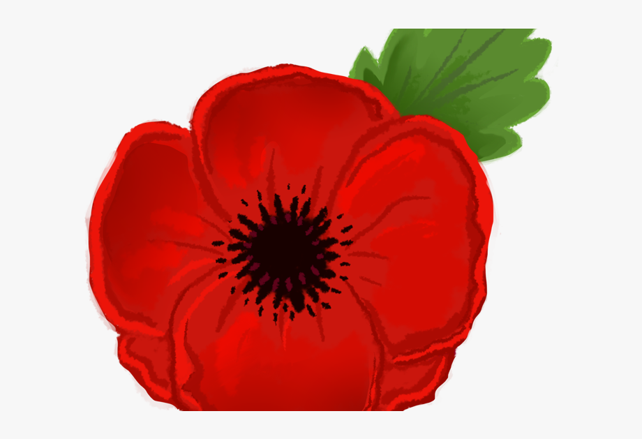 Poppy Clipart Veterans Day.