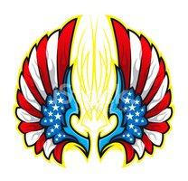 American Flag Wings stock vectors.
