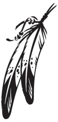 Download High Quality feather clipart indian Transparent PNG.