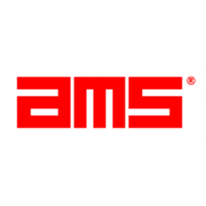 American Management Systems (AMS).