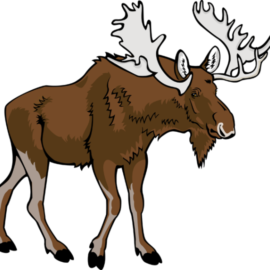 January clipart moose, January moose Transparent FREE for.