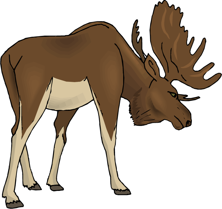 Moose clipart cartoon free images 5.