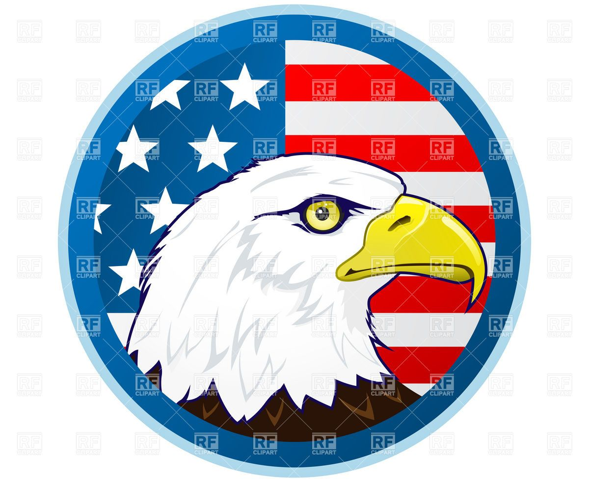 Bald eagle and American flag Vector Image.