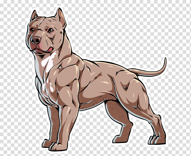 American Bully illustration, American Pit Bull Terrier.