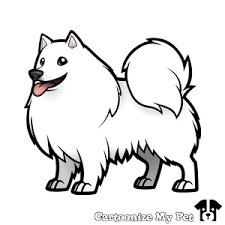 Image result for american eskimo dog cartoon drawing.