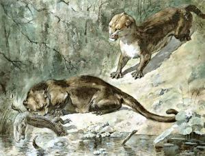 Mammals 3 Clip Art Download.