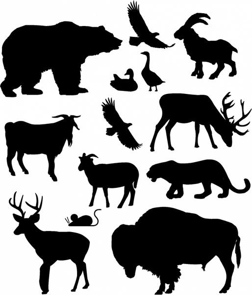 North American Animals Free vector in Adobe Illustrator ai.