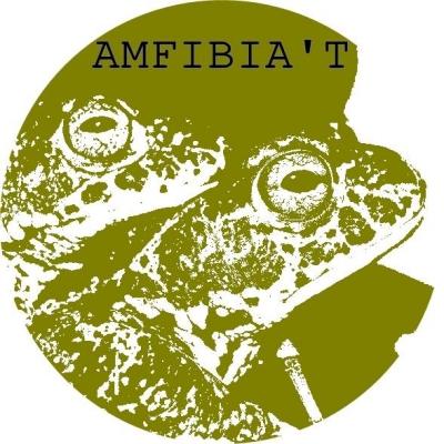 Picampall posa en marxa el projecte «Amfibia't» per recuperar.