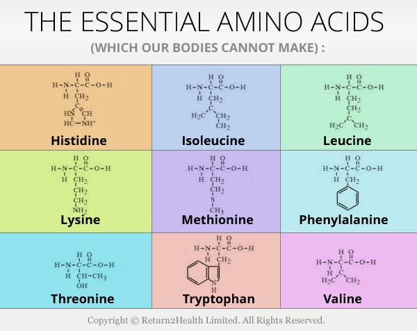 Acetylcarnitine hydrochloride  C9H18ClNO4  PubChem