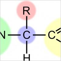 Amino Acid Clipart.