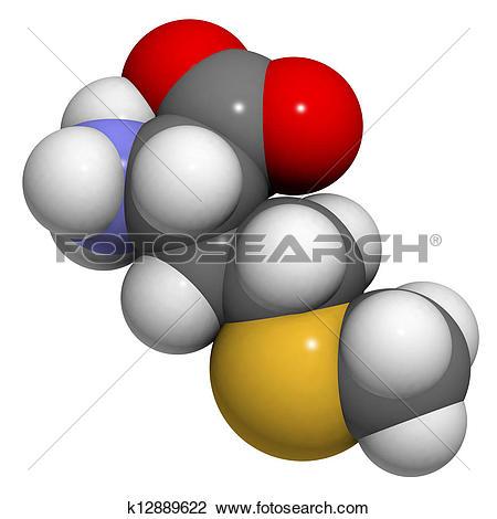 Essential amino acid Illustrations and Stock Art. 252 essential.