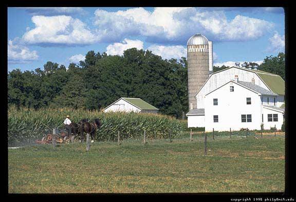Farms : amish.