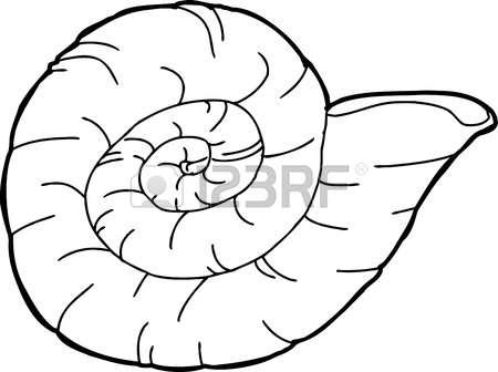 221 Ammonite Stock Vector Illustration And Royalty Free Ammonite.