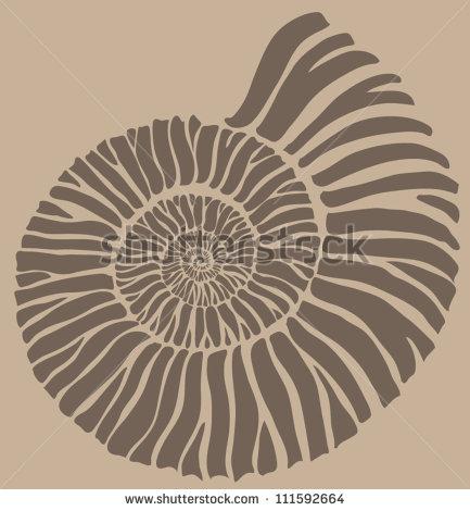 Ammonite Stock Photos, Royalty.