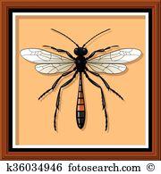 Ammophila Clipart Vector Graphics. 3 ammophila EPS clip art vector.