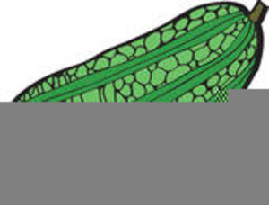 Clipart Picture Of Ampalaya.