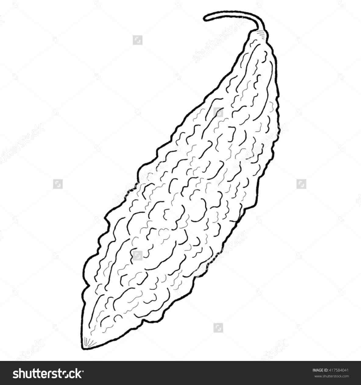Bitter Foods Clipart Black And White clipart ampalaya.