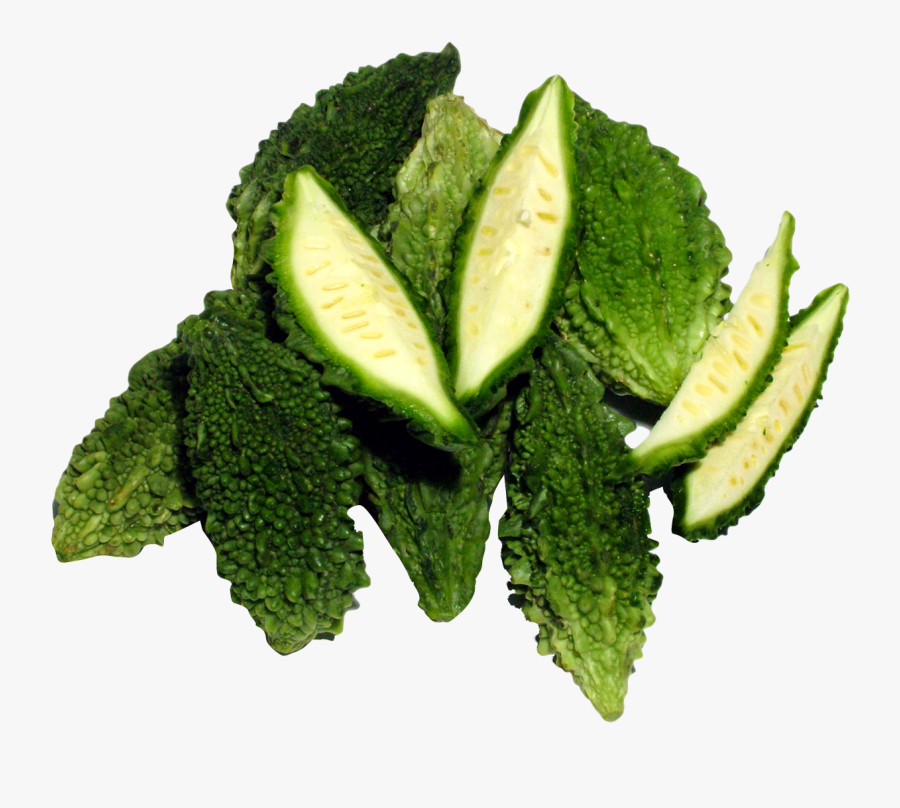 Bitter Gourd Png Image.