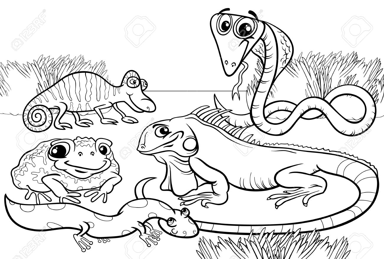 Black and White Cartoon Illustrations of Funny Reptiles and Amphibians...